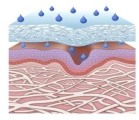 3. La piel se hidrata intensamente.