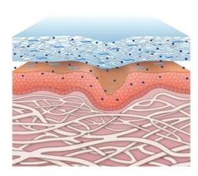 4. Los elementos solubles se activan y liberan desde el velo